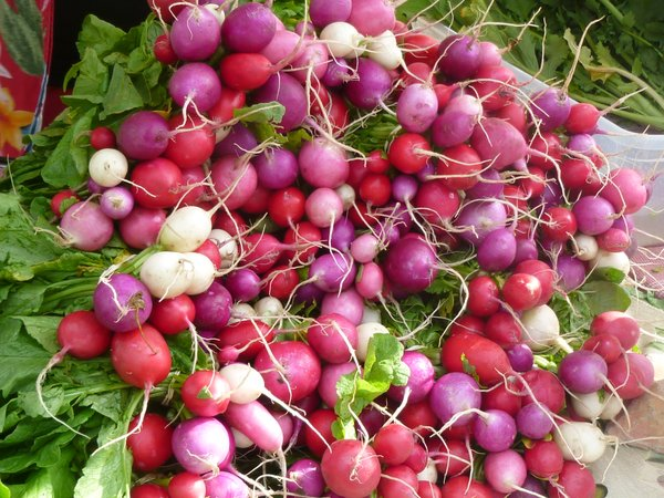 Radishes are in season once again at Cottin's Hardware Farmers Market!