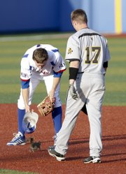 Kansas shortstop Kevin Kuntz and Wichita State runner Tyler Baker get after a runaway squirrel that made it on the field during the fourth inning, Tuesday, April 30, 2013 at Hoglund Ballpark. Baker was able to scoop up the squirrel with his helmet and deposit it safely outside the stadium. Nick Krug/Journal-World Photo