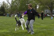 Kim Rice tries to pry the Frisbee away from her dog Buddy, a Texas heeler, so that she can complete another throw during  a competition at South Park Sunday afternoon.