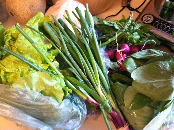 This week's haul: Head lettuce, salad mix, green onions, asparagus, whole-wheat flour, radishes and baby bok choy.