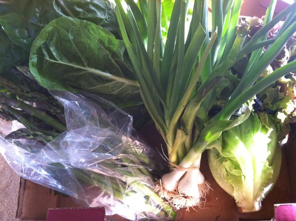 Our CSA box, minus strawberries and snap peas: Green onions, head lettuce, asparagus and Swiss chard.
