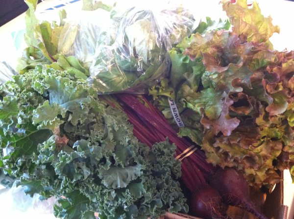 Beets, basil, head lettuce, snap peas, kale and broccoli.