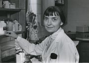 Stata Norton Ringle works in a laboratory at the Kansas University Medical Center, likely in the late 1970s.