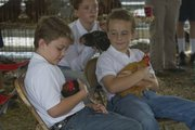 Richard Gwin/Journal World Photo.From left, brother's Keiron and Qunicy Langston both of the Kanwaka 4-H club waited for their turns to show off their chickens during Wednesday's July 31, 2013 judging events at the Douglas County Fair.