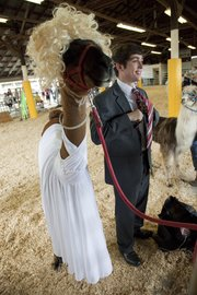 Mason Kelso, of the Eudora 4-H Club, shows his llama, named Spirit, in a Marilyn Monroe costume, while he poses as President John F. Kennedy on Wednesday at the Douglas County Fair.