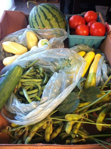 This week's goodies: summer squash, edamame, watermelon, peppers, tomatoes, cucumber, green beans.