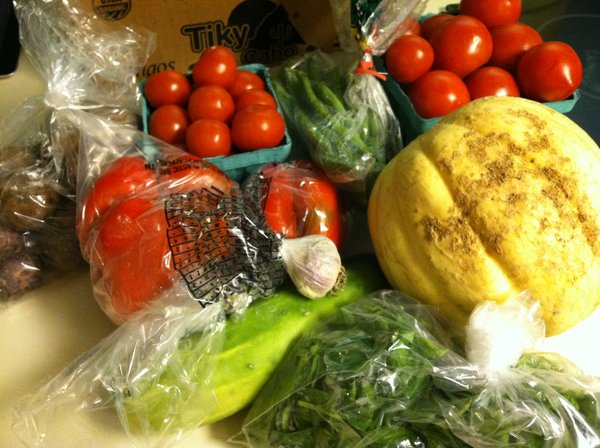 Two kinds of tomatoes, garlic, green beans, potatoes, basil, cucumbers, bell peppers and cantaloupe.