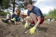 Pinckney students Paxton Harvey, left, and Simon Mason, participate in an archeological dig in front of the school.