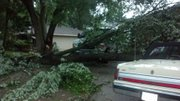 Lightening struck this tree at 2709 Ousdahl Rd. Thursday night, crushing handyman Greg Springer's van parked in the driveway.