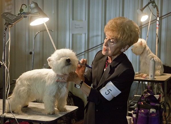 Pamela Johnston, of Adrian, Mo., grooms her West Highland terrier Cruise, during the 2013 Lawrence Jayhawk Kennel Club Dog Show at the Douglas County Fairgrounds.