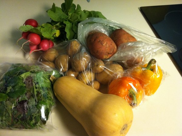 Butternut squash, salad greens, new potatoes, sweet potatoes, radishes and bell peppers.