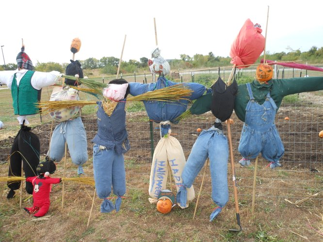 The Scarecrow Workshop held at the Lawrence Community Shelter earlier this month yielded several wonderful creations that will be available for bids at the Scarecrow Contest & Auction this Friday @ The Seed Co Building in Lawrence!
