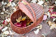 A family leaf-collection walk is a great way to keep your kids occupied as the seasons turn.