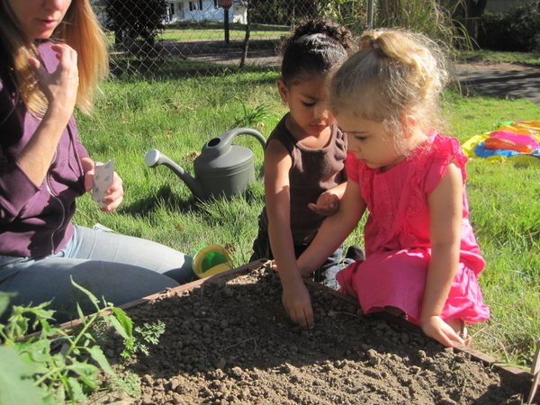Planting the garden together