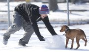 Billy Burford, a Kansas University junior from Olathe, tosses some powder at his 20-week-old puppy, Daisy, as the two play on the tennis courts at Veterans Park on Thursday, Jan. 2, 2014.