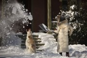 Sophia Riedemann, Lawrence, has a little fun with her dog, Shiloh, as she shovels the front walkway outside her home on Wednesday morning as the city digs itself out from the snowstorm.