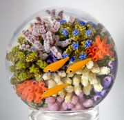 "This piece of Cathy Richardson&squot;s is called the ""Double Coral Reef"" and is about 3 inches in diameter. All the coral and fish are individually sculpted in glass over a tiny torch flame and then assembled and encased in clear glass crystal."