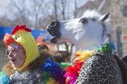 From left, Kristin Colahan of Lawrence and Glenn Baughman of Wichita, dressed like a chicken and a horse, amusing many in downtown Lawrence during the annual Mardi Gras parade Tuesday.