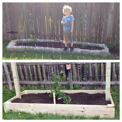 The kiddo with our two new garden beds. The wood one is for grapes, the stone one is for elderberries.