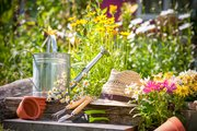 Get your garden and yard ready for summer and beyond.