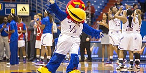 Baby Jay works to get the crowd fired up before the start of Kansas' game against No. 10 Cal Sunday at Allen Fieldhouse.