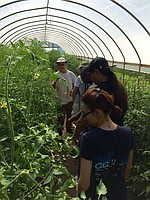Community Coordinators touring Moon on the Meadow Farm