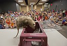 Topeka Zoo comes to Lawrence Public Library