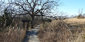 There are an estimated 20 miles of hiking and biking trails in the forested area just west of the governor's mansion, Cedar Crest, in Topeka.