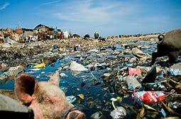 Haitian beach front