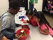 Demi Onitiri, left, fills his muffin pan with batter while his classmates, Joselyn Soria Ordaz (in red) and Aruna Cruz Cruz (in pink) offer some guidance. The Hillcrest Elementary third-graders took part in a cooking lesson Friday, Feb. 2, 2017, as part of the Lawrence district's Farm 2 School program.