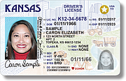 This sample image shows a new Real ID driver's license. The licenses, intended to comply with a federal law that requires driver's licenses to meet certain standards, are distinguished visually from old licenses by a star in the upper right corner.