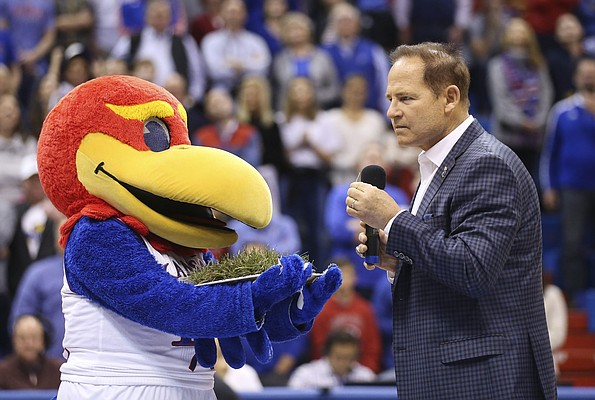 Newly-hired Kansas football coach Les Miles tastes a piece of Kansas grass as offered by Baby Jay as he is introduced to the Allen Fieldhouse crowd during halftime of the Jayhawks' game against Stanford.