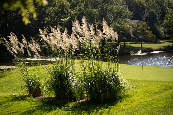 The cattails behind the green on No. 14 at Lake Perry Country Club provide just the right touch of picturesque beauty to put your mind at ease at the tricky hole.